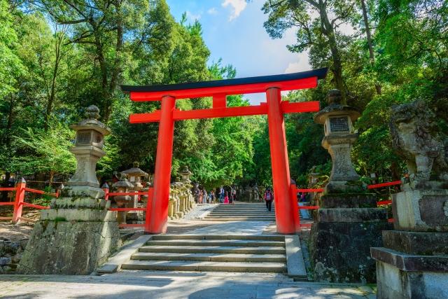 奈良に行くならパワースポット春日大社へ!簡単見どころまとめ