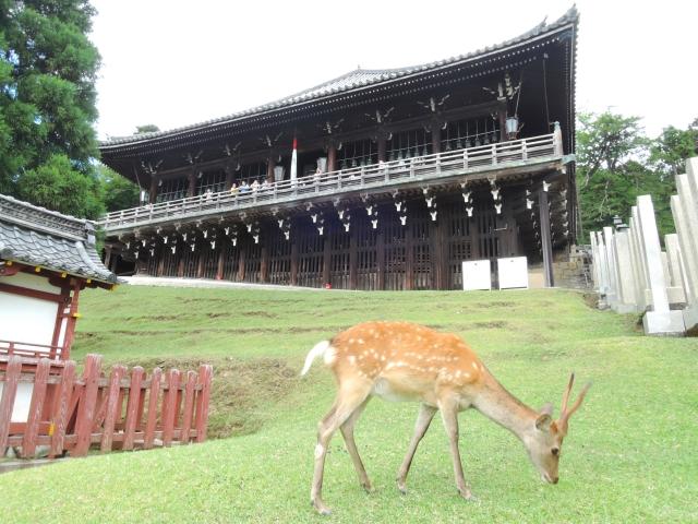 奈良県の世界遺産ランキング!一度は行っておきたい寺社5選