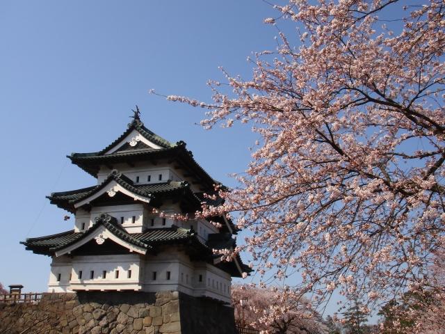 弘前公園の桜祭り!とっておきの駐車場穴場情報と混雑・渋滞回避のコツ