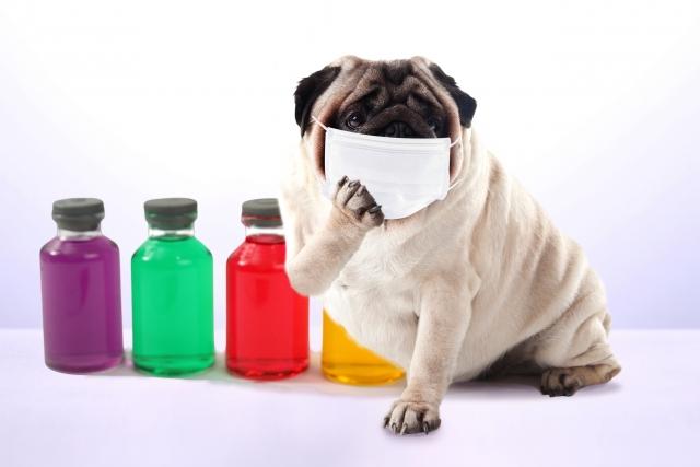 使い捨てマスクの使用期限は未開封ならどれくらい?何日使えるもの?