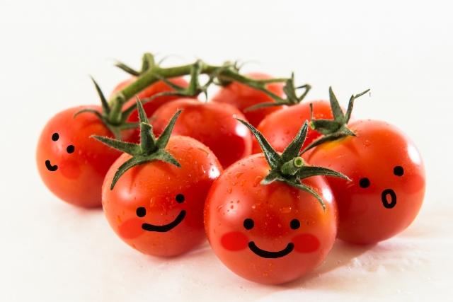 ミニトマトの賞味期限って?冷蔵庫に入れるなら冷凍保存が長持ちでおすすめ