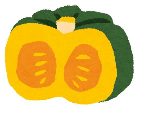 かぼちゃにカビ?緑と白いの食べられるのはどっち?見分け方や保存のコツを紹介