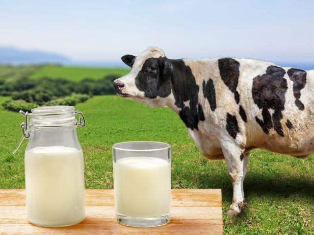 牛乳は冷蔵庫保存で開封後何日まで大丈夫?賞味期限切れの使い道も紹介